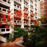 universidade em bangladesh Imagem de Stock