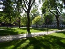 Universidade Salão e solda Salão, jarda de Harvard, Universidade de Harvard, Cambridge, Massachusetts, EUA Imagens de Stock