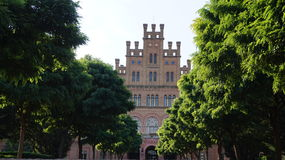 Universidade verde Foto de Stock Royalty Free