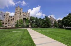 Università del Michigan Fotografie Stock Libere da Diritti