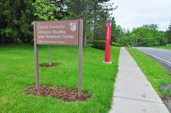 Università di Cornell Fotografia Stock Libera da Diritti