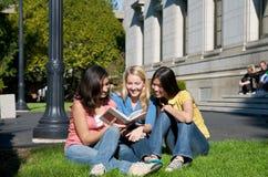 università multiculturale degli allievi della città universitaria Fotografie Stock Libere da Diritti