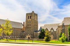 Universität von Cornell Lizenzfreie Stockbilder
