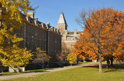 Universität von Cornell Lizenzfreies Stockfoto