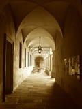 Universität von Pavia Lizenzfreies Stockbild