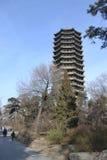 Universität von Peking boyata Stockbilder