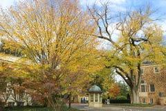 Universität von Princeton ist private Ivy League University in New-Jersey, USA Lizenzfreie Stockfotografie