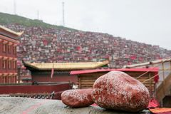 Université bouddhiste dans Sichuan, Chine photographie stock libre de droits