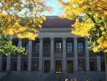 Université d'Harvard Image stock