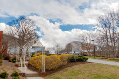 Université de Carolina School du nord du campus d'arts Images libres de droits