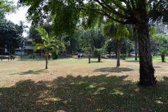 Université de Chiang Mai Images libres de droits