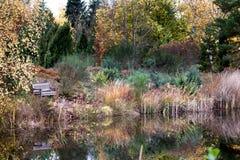 Université de jardin botanique de lande et d'étang de Bayreuth photographie stock