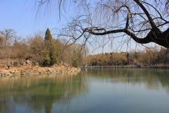 Université de Pékin Photo libre de droits