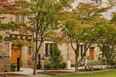 Université de Yale images libres de droits