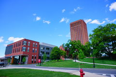 Université du Massachusetts Amherst Image stock