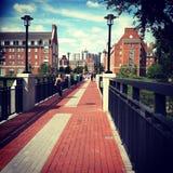 Université du Delaware Image libre de droits