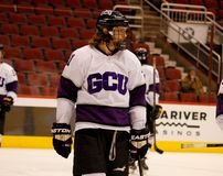 Universitair de Sprongenhockey van Grand Canyon Stock Foto's
