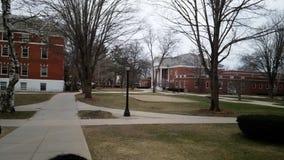Universiteit in de winter Stock Afbeelding
