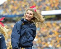 2014 Universiteitsvoetbal - Cheerleaders Royalty-vrije Stock Afbeelding