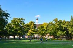 Universitet av Illinois arkivbilder