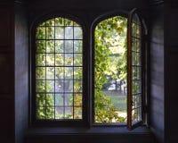 Universitet Windows Arkivbilder