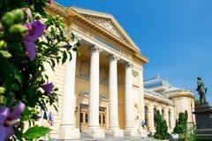 Universitetar av medicinen, Bucharest fotografering för bildbyråer