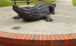 universitetar för florida gatorskulptur arkivfoton