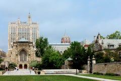 universitetar yale Royaltyfri Bild