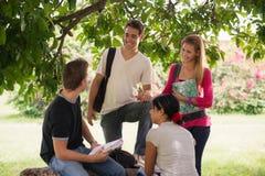 Universitetardeltagare som möter och förbereder provet Arkivbild