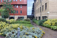 Universitetsområde Royaltyfri Fotografi