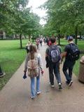 Universitetsområde: Studenter som går mellan grupp Royaltyfri Bild