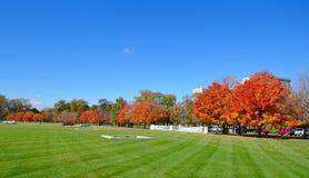 Universitetsområdenedgångfärger Royaltyfri Fotografi