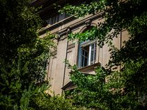 University building - classroom window. Trees surrounding the building stock photo