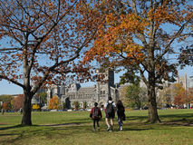 University campus in fall Stock Photography