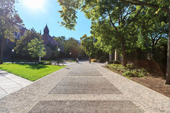 University of Chicago Campus stock photos