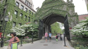 University of Chicago campus. 1080p stock footage