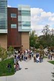 University crowd Stock Images