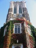 University entrance at the fall. Picture of the University building (entrance) at the fall Royalty Free Stock Images
