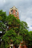 University of Florida building. A red brick building in University of Florida Royalty Free Stock Photos