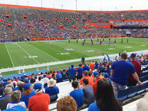 University of Florida fans watch the pre-game warm up. GAINESVILLE, FLORIDA, USA - November 21, 2015: University of Florida gator fans dressed in team colors Stock Images
