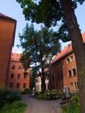 University garden in Krakow Royalty Free Stock Images