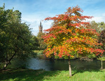 The University of Glasgow from Kelvingrove park on a sunny autumn day Stock Image