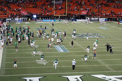 University of Hawaii players and fans rush on the field to celeb royalty free stock photos
