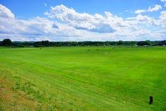 University of Massachusetts Amherst. Sport field stock photo