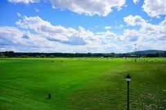 University of Massachusetts Amherst. Soccer field stock image