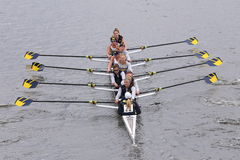 University of Michigan Women's Crew races in the Head of Charles Regatta Women's Master Eights Stock Photography