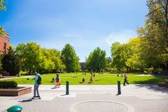 University of Oregon Campus Grass Plaza Stock Photos