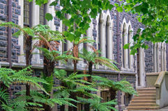 University of Otago - Dunedin royalty free stock photos