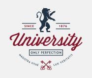 University of perfection vector illustration