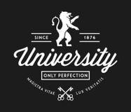 University of perfection white on black vector illustration